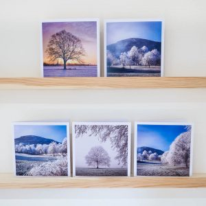set of 5 winter landscape christmas cards