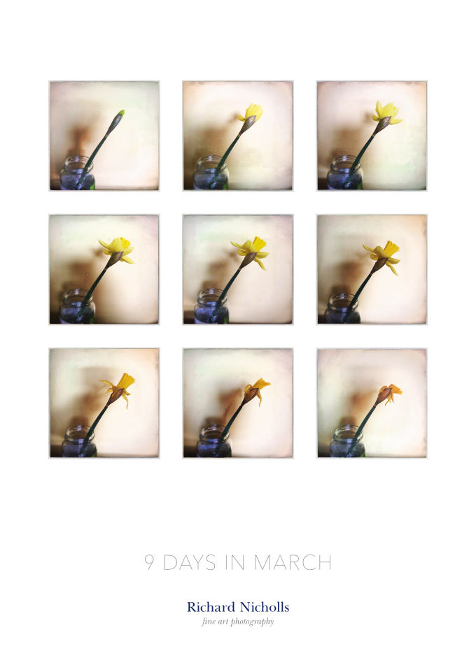 9 days in march – haphazard timelapse
